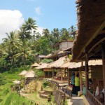 Rice Terrace Cafe at Tegallalang - Bali, Indonesia