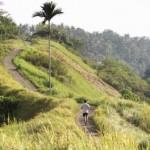Joggen-op-de-Campuhan-Ridge-Walk.-Indonesie-Bali-Ubud-Explorist