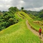 campuhan-ridge-walk-bali