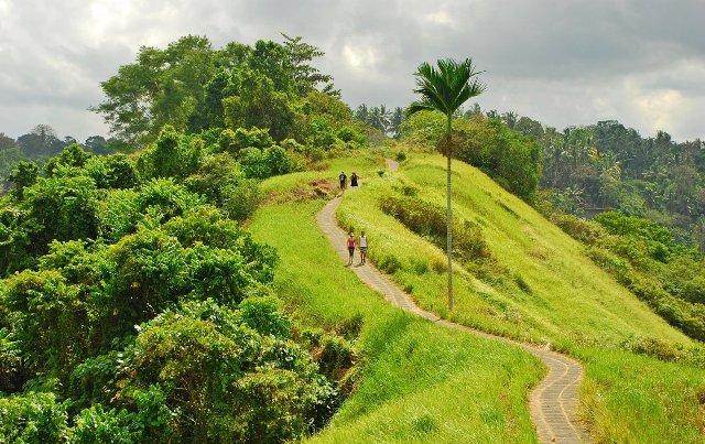 campuhan-ridge-walk-ubud-bali