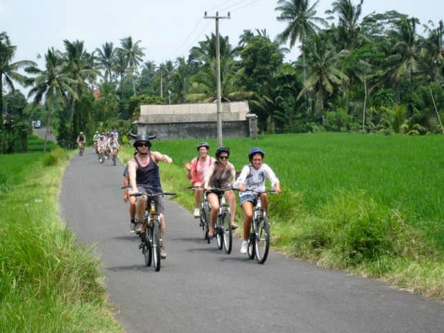 cycling-with-visit-school-bali-fitness-escape-11