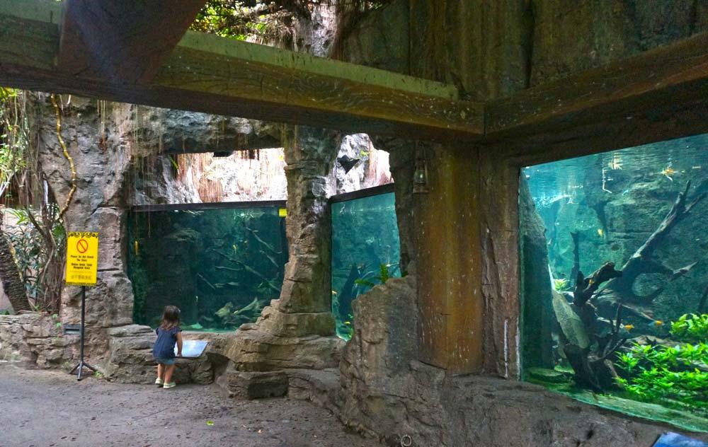 Travel_Indonesia_BaliSafariMarinePark_Aquarium2